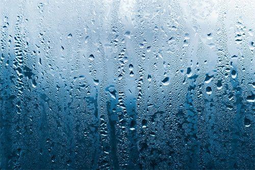 Water-Moisture