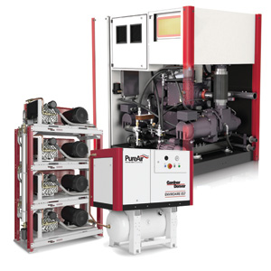 Dearing Compressor and Pump offers a variety oOil Free Compressors